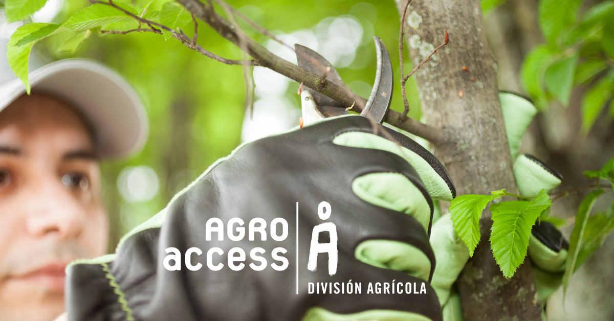 AgroAccess poda