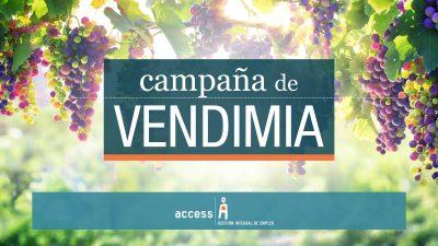 Vendimia 2017