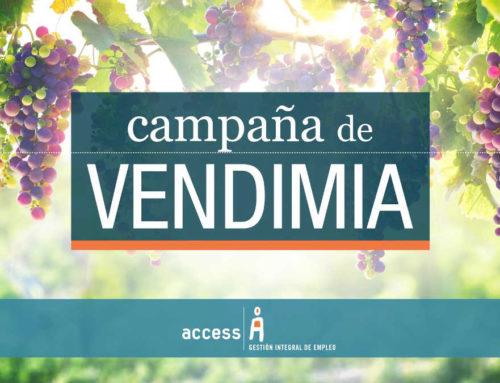 Vendimia 2017: El aumento en el precio del granel contrarresta el descenso en la producción de vino