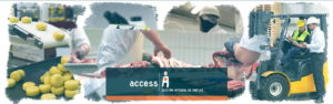 Access especialista Industria Alimentaria