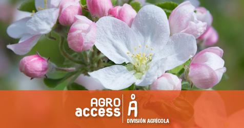 Aclareo Agroindustria