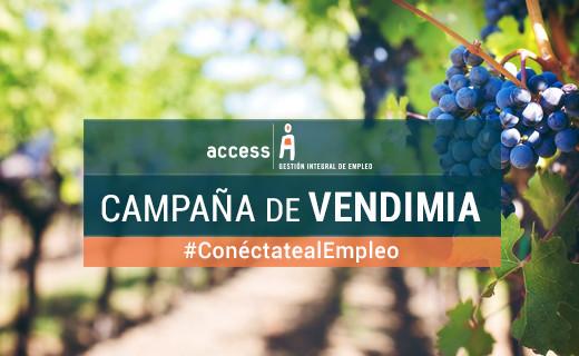 Campaña Empleo Vendimia AgroAccess