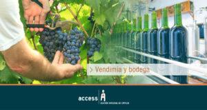 Campaña Vendimia 2020/21 ¿Estás preparado?